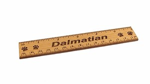 Dalmatian Dog 6 inch Alder Wood Ruler