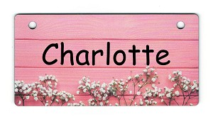 Baby's Breath on Pink Design Crate Tag Personalized With Your Dog's Name