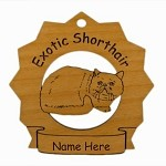 7170 Exotic Shorthair Cat Ornament Personalized with Your Cat's Name