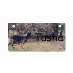 Photo Full Picture Crate Tag Personalized With Your Dog's Name